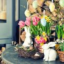 Wielkanocna dekoracja z żywych kwiatów